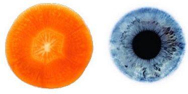 carota-occhio