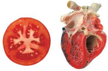 pomodoro-cuore