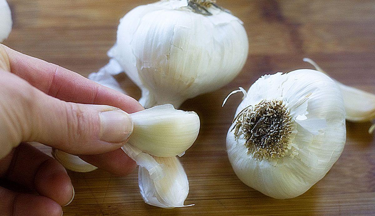 spicchio-aglio
