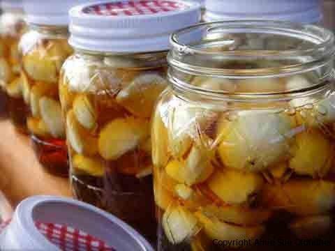 infuso-miele-aglio