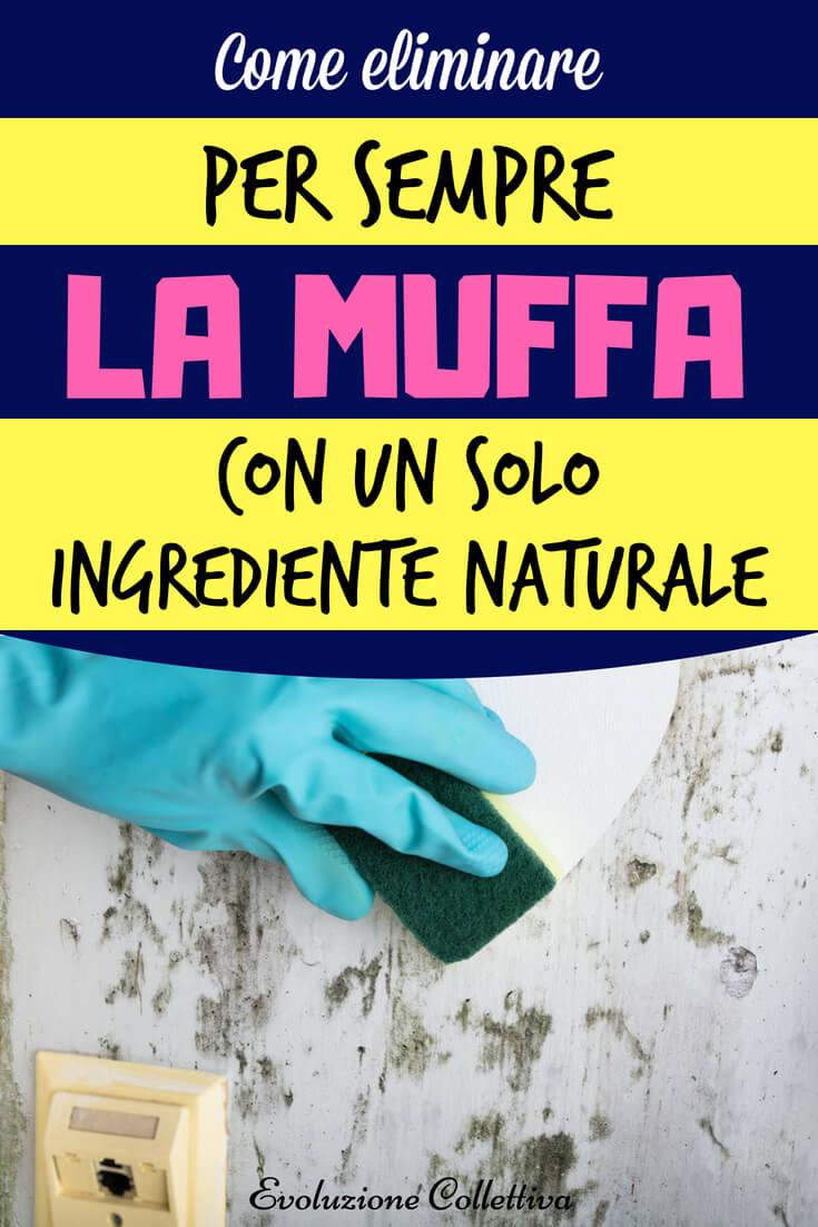 #muffa #rimedinaturali #casa #ecofaidate #evoluzionecollettiva