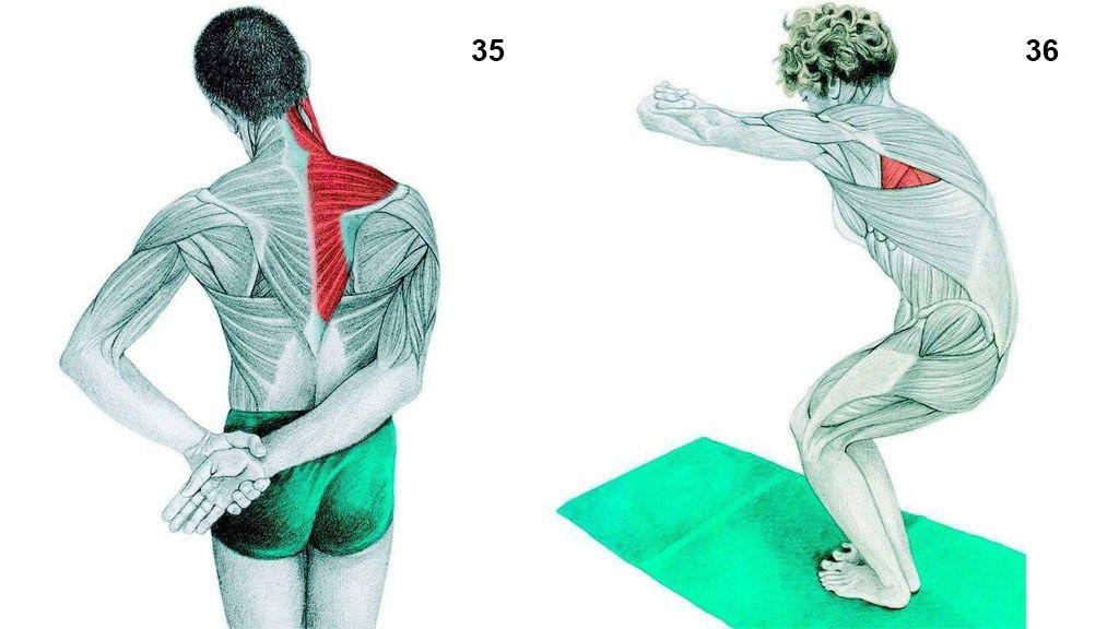 yoga-35-36