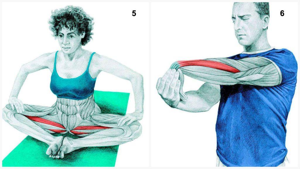yoga-5-6