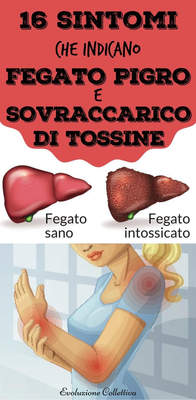 #fegato #salute #benessere #evoluzionecollettiva