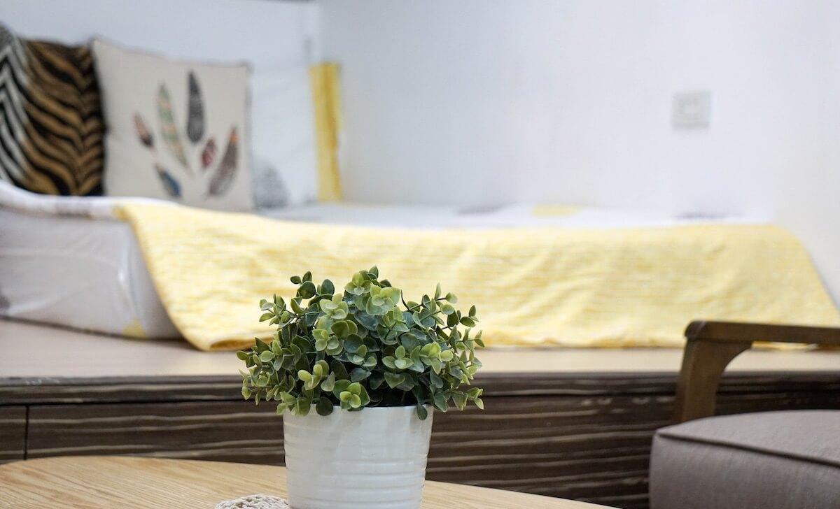 Pianta Camera Da Letto Matrimoniale : Insonnia le piante da tenere in camera da letto per dormire